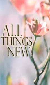 All things new devotional series cover
